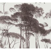 AS Création Vliestapete History of Art Waldtapete schwarz weiß 376511 10,05 m x 0,53 m