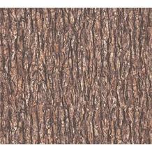 AS Création Vliestapete Il Decoro Tapete in Baumrinden Optik beige braun grau 368722 10,05 m x 0,53 m
