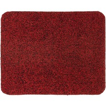 Astra Fußmatte Entra Saugstark rot 75x130