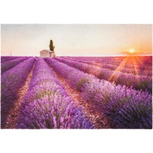 Astra Türmatte Deco Print D. 204 Provence 50x70 cm