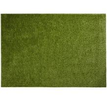 Barbara Becker Teppich b.b Miami Style grün 67 x 130 cm