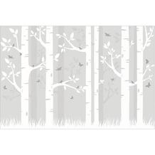 Bilderwelten Vliestapete - Holz Birkenwald mit Schmetterlingen und Vögel - Fototapete Breit 190x288cm