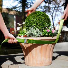 Bio Green Tragegurt für Pflanzkübel