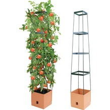 Bio Green MAXITOM Pflanzenturm anthrazit