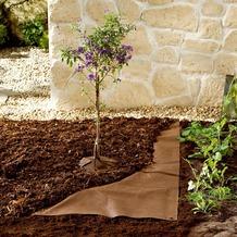 Bio Green Mulch Vlies 10 x 1,5m 70 g/m² braun