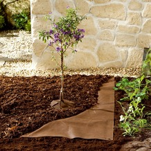 Bio Green Mulch Vlies 10 x 3,0m 70 g/m² braun