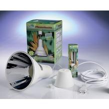 Bio Green Pflanzen Energiesparlampe L15