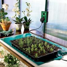 Bio Green Wärmeplatte 30x60 cm, 32 W