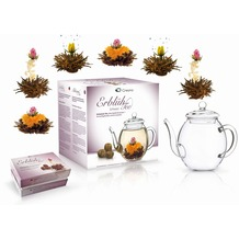 "Creano Geschenkset ErblühTee ""Schwarzer Tee"" - 6 Teeblumen, 1 Creano Teekanne (500ml)"
