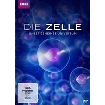 Die Zelle - Unser geheimes Universum [DVD]