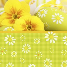 Duni Servietten 3-lagig Motiv Yellow Daisies 33 x 33 cm 20 Stück