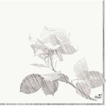 Duni Zelltuch-Servietten Grey Rose 33x33 cm 3lagig, 1/4 Falz 50 Stück