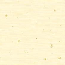 Duni Dunicel-Tischsets 30 x 40 cm Star Stories Cream