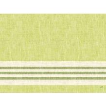 Duni Dunicel-Tischsets Raya kiwi 30 x 40 cm 100 Stück
