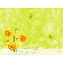 Duni Papier Tischsets Spring Flowers 30x40 cm 250 Stück
