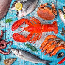 Duni Servietten Tissue Seafood 33 x 33 cm 20 Stück