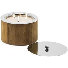 EDZARD Windlicht/Kerze Midland H 12 cm