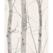 Erismann Strukturtapete auf Vlies 630510 Paradisio Muster/Motiv grau