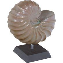 fleur ami Figur Nautica Sculpture, 31x19/37 cm, verdigris bronze