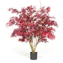 TINGO LIVING Kunstpflanze Ahorn, 150 cm, burgund
