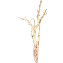 fleur ami Kunstpflanze Ghostwood, sandgestrahlt, verzweigt, 150-175 cm