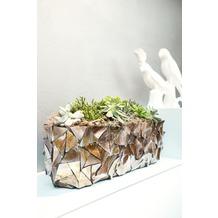 fleur ami Muschel-Tischgefäß Perlmutt braun L 60 cm B 15 cm H 18 cm
