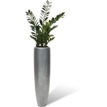 fleur ami SETS BUSINESS, LOFT , 32/120 cm, aluminium, ZAMIOCULCAS 110 cm