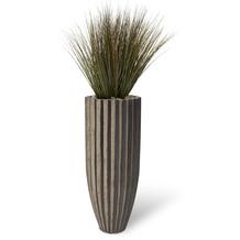 fleur ami SETS BUSINESS, SAHARA , 40/100 cm, black stripes, ZWIEBELGRAS 90 cm