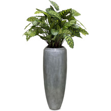 fleur ami SETS PREMIUM, LOFT , 30/80 cm, aluminium, CALATHEA Kunstpflanze, 80 cm