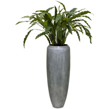 fleur ami SETS PREMIUM, LOFT , 30/80 cm, aluminium, CALATHEA Kunstpflanze, 85 cm