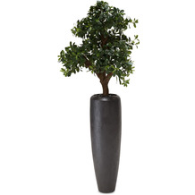 fleur ami SETS PREMIUM, Loft 31/100 cm black iron, PITTOSPORUM Kunstpflanze, 120 cm