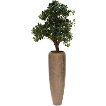 fleur ami SETS PREMIUM, LOFT , 31/100 cm, verdigris bronze, PITTOSPORUM Kunstpflanze, 120 cm
