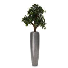 fleur ami SETS PREMIUM, Loft 32/120 cm aluminium, PITTOSPORUM Kunstpflanze, 120 cm