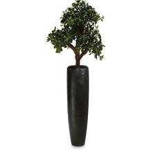 fleur ami SETS PREMIUM, LOFT , 32/120 cm, black iron, RHAPIS PALME DELUXE Kunstpflanze, 100 cm