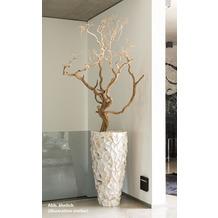 fleur ami SETS PREMIUM, MUSCHEL 50/95cm weiß, MANZANITA 180-200 cm