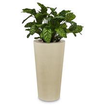 fleur ami SETS PREMIUM, POLYSTONE CONICAL , 43/80 cm, creme, CALATHEA 80 cm