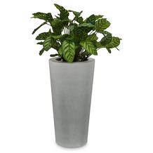 fleur ami SETS PREMIUM, POLYSTONE CONICAL , 43/80 cm, grau, CALATHEA 80 cm