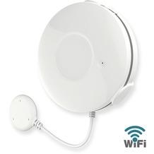 Fontastic Intelligenter WLAN Wassersensor weiß komp. zu Android, iOS, IFTTT