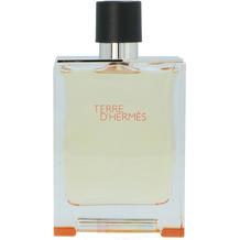 Hermes Terre D' edt spray 200 ml