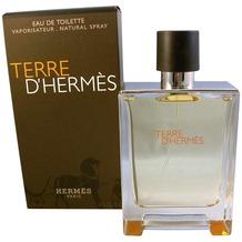 Hermes TERRE D'HERMES Eau de Toilette Vapo 100 ml