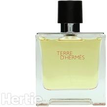 Hermes Terre D' edp spray 75 ml