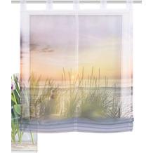 Home Wohnideen Schlaufenraffrollo Effektvoile Digitaldruck Evening Natur 140 x 100 cm