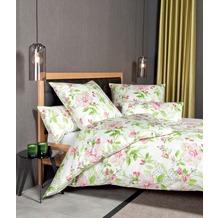 Janine Bettwäsche Mako-Satin Messina magenta grün Pflanzenmuster Bettbezug 135x200, Kissenbezug 80x80cm