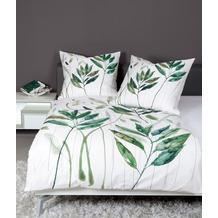 Janine Bettwäsche modern art Mako-Satin grün 42066 135x200, 80x80
