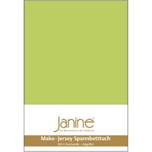 Janine Jersey-Spannbetttuch Jersey apfelgrün Kissenbezug 40x40