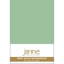 Janine Jersey-Spannbetttuch Jersey lind Spannbettlaken 200x200