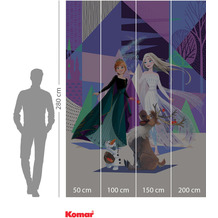 Komar Adventure Frozen Abstract Arendelle 200 x 280 cm
