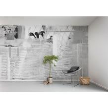 "Komar Digitaldruck Fototapete auf Vlies ""Rhombus Hiding"" 500 x 280 cm"