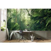 """Komar Digitaldruck Fototapete auf Vlies """"Tropenwelten"""" 500 x 250 cm"""