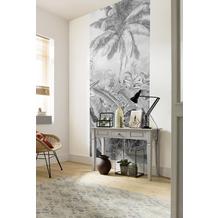 "Komar Digitaldruck Fototapete auf Vlies""Amazonia Black and White Panel"" 100 x 250 cm"